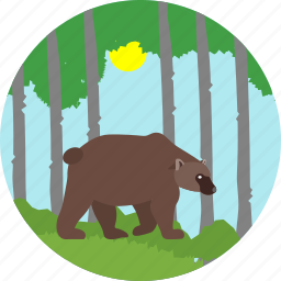animal, bear, camp, camping, evening, forest, sunset icon