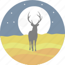 deer, reindeer, swamp deer, stars, animal, night icon