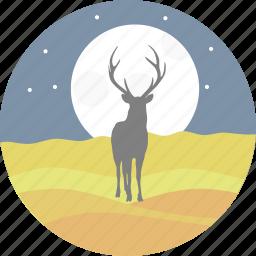 animal, deer, night, reindeer, star, stars, swamp deer icon