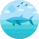 beach, fish, fishing, marine, ocean, sea, undersea icon