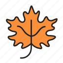 autumn, fall, leaf, maple icon