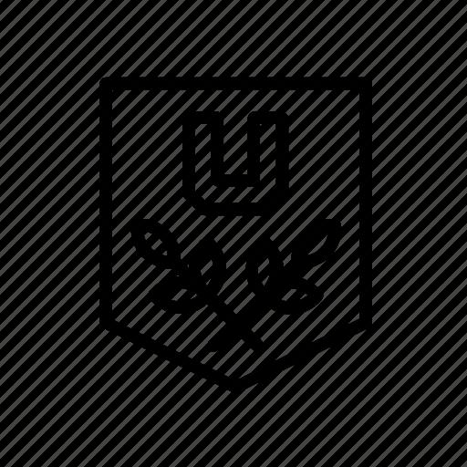 college, education, emblem, shield, university icon