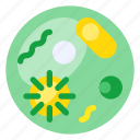 bacteria, biology, education, knowledge, nature, research, science icon