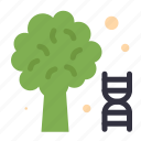 dna, knowledge, science, tree icon