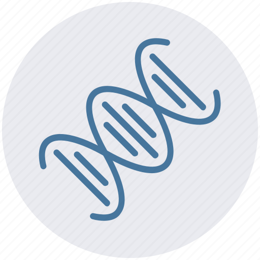 Chain, dna, genetics, helix, molecule, science, strand icon - Download on Iconfinder