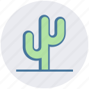 cactus, eco, ecology, nature, plant, pot, science icon