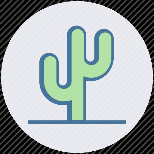 cactus, eco, ecology, nature, plant, pot, science icon