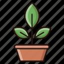 botany, nature, plant, science icon