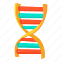 biology, biotechnology, cartoon, chain, dna, molecule, science icon