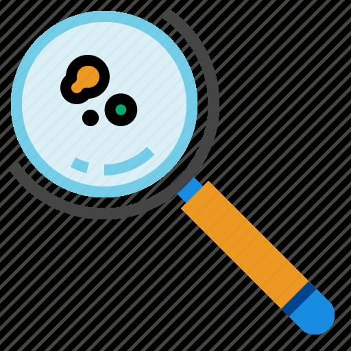 detective, glass, zoom icon