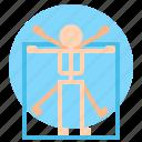 anthropology, man, vitruvian icon