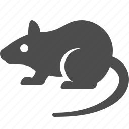 mouse, rat, rodent icon
