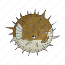 animal, hedgehog fish, sea icon