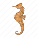 animal, sea, seahorse icon