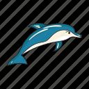 animal, dolphin, mammal, marine icon