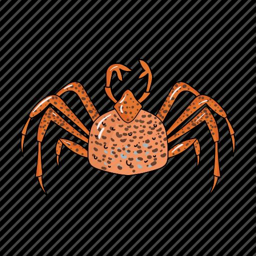 Animal, arthropod, crab, marine icon - Download on Iconfinder