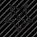 animal, sea, star icon