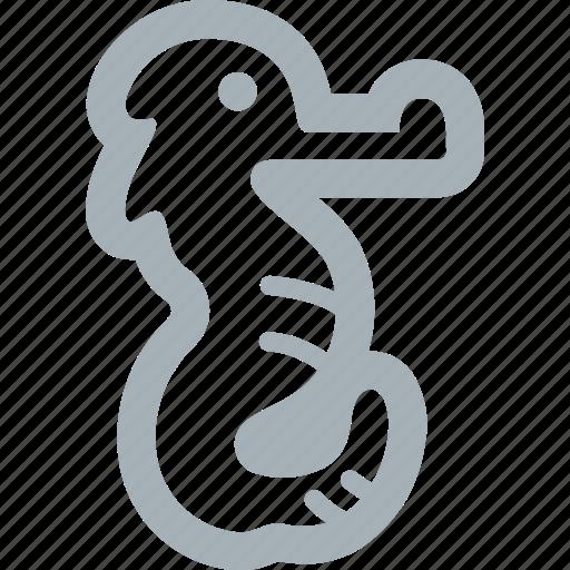 animals, sea, seahorses icon