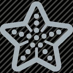 animals, sea, starfish icon