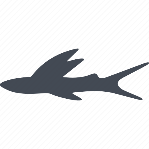 animal, fins, fish, ocean, sea, water icon