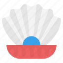 bivalve mollusks, clam, seashell with pearl, shell, shellfish icon