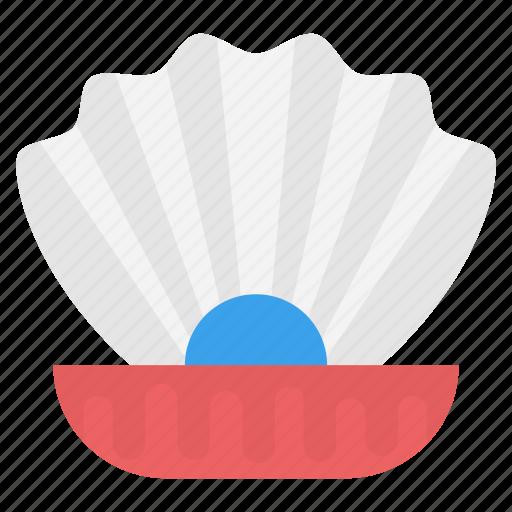 bivalve mollusks, clam, seashell with pearl, shell, shellfish icon