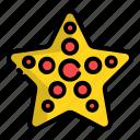 sea, star, starfish