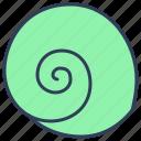 moon, snail, sea, seashell, marine