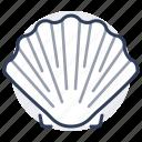 scallop, sea, seashell, marine