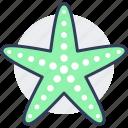 starfish, sea, seashell, marine