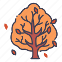 autumn, tree, season, fall, branch, october, leaf icon