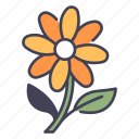 spring, season, flower, blossom, floral, fresh, bloom icon