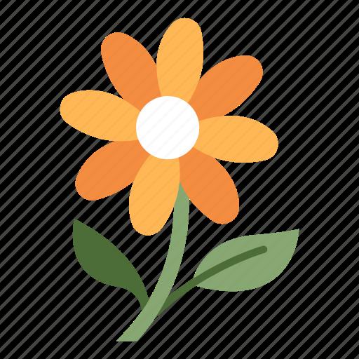 Bloom, blossom, floral, flower, fresh, season, spring icon - Download on Iconfinder