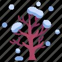branch, cold, nature, season, snow, tree, winter