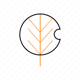 leaf, natural, outline, tree icon