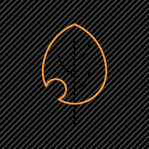 leaf, natural, outline, tree icon