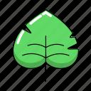 leaf, leaves, monstera, tropical