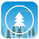 fir, forest, nature, sky, tree icon