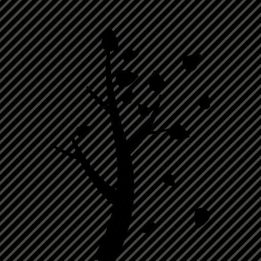autumn, forecast, garden, leaf, season, tree, weather icon