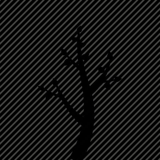forecast, garden, leaf, season, spring, tree, weather icon