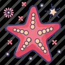 sea animal, mammal fish, sea creature, starfish, cetacean icon