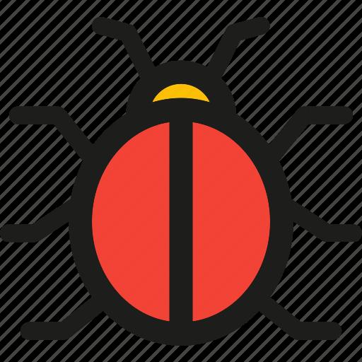bug, coding, internet, mobile, seo, web icon