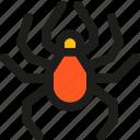 coding, crawler, internet, mobile, seo, web icon