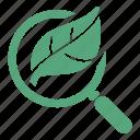 magnifying glass, organic search, organic seo, search engine optimization icon