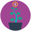 grown, mobile marketing, money, seo icons, seo pack, seo services, web design icon