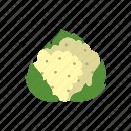 cauliflower, cook, dish, food, kitchen, vegetable, veggie icon