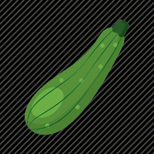 cook, dish, food, green, vegetable, veggie, zucchini icon