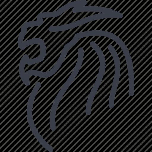 chinese dragon, legend, myth, singapore icon