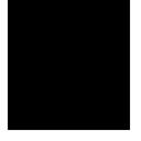 copy, seesmic icon