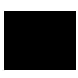 copy, pidgin icon